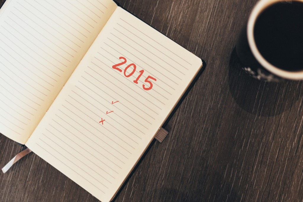 2015 bilance